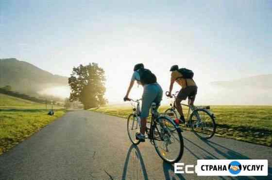 Прокат велосипедов Губкин