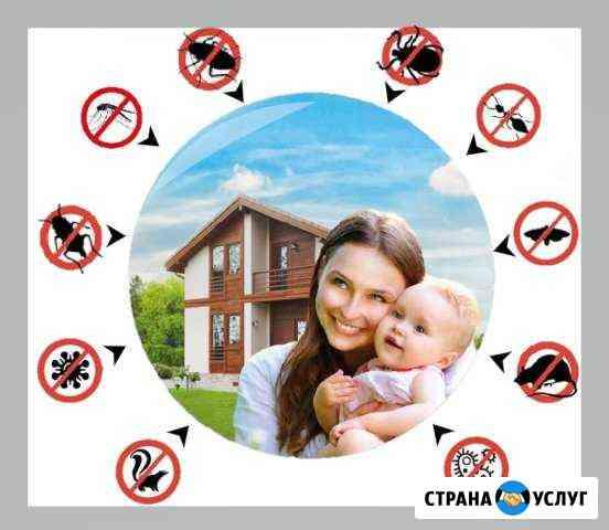 Уничтожение тараканов, клопов, муравьев, плесени Нижний Новгород