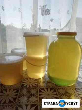 Мёд акации Брянск
