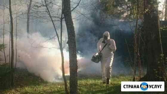 Уничтожение комаров, тараканов, клопов, дезинфекци Йошкар-Ола