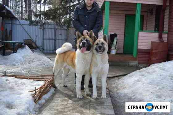 Гостиница для животных Ангарск