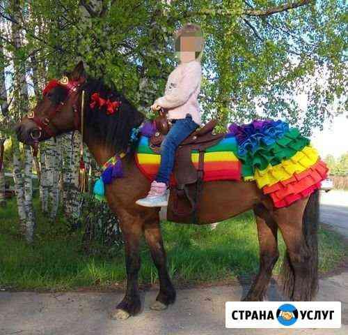 Добрые нарядные пони и ослик на детский праздник Кострома