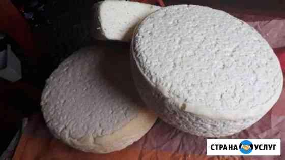Сыр собственного изготовления Нижний Новгород