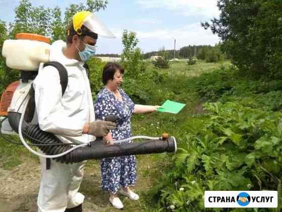 Уничтожение Борщевика Нижний Новгород
