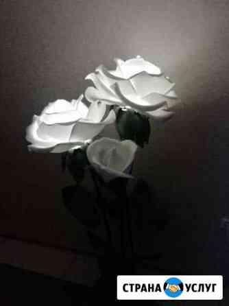 Большие цветы и светили Бузулук