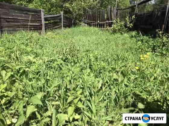 Покос травы, вырубка кустарников, разбор зданий Архангельск