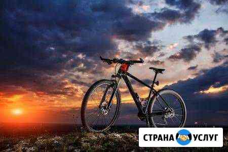 Ремонт велосипеда Рыбинск