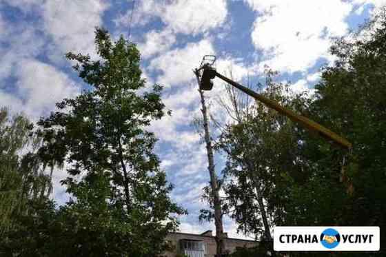 Уборка опасных деревьев Суоярви