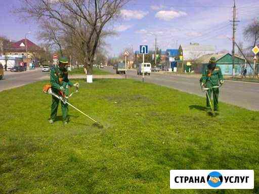 Покос травы. Очистка от дкр Петрозаводск