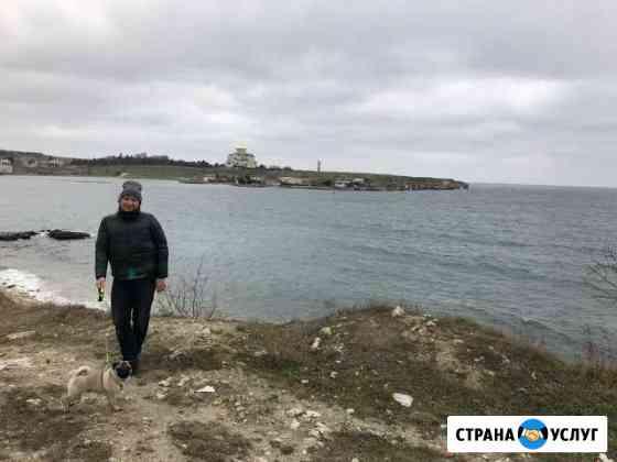 Передержка и выгул собак Севастополь