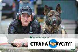 Кинолог (специалист по поведению собак) Магадан