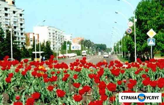 Фотоуслуги Заречный