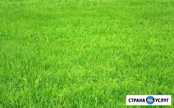 Скошу траву Томск
