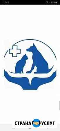 Ветеринарный кабинет vet.Доверие Шебекино
