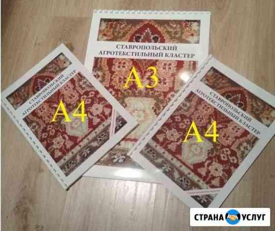 Цветная и ч/б печать лучшая до формата А1 цена Ставрополь
