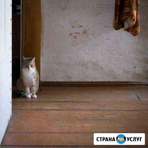 Фото и видео съемка Тюмень
