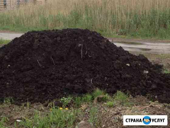 Приму бесплатно грунт в Новочебоксарске Новочебоксарск