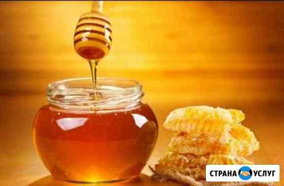 Мёд Йошкар-Ола