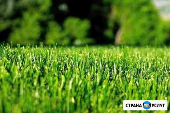 Покос травы Благовещенск