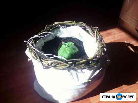 Земля в Мешках самовывоз Архангельск