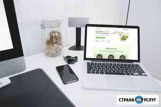 Создание сайта на Tilda Омск