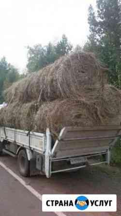 Продам сено в рулонах 250кг Усть-Кут