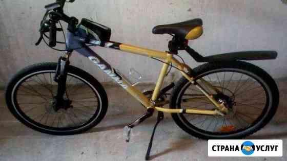 Велосипед прокат Калининград