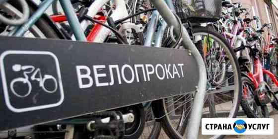 Прокат велосипедов И электросамокатов Рузаевка