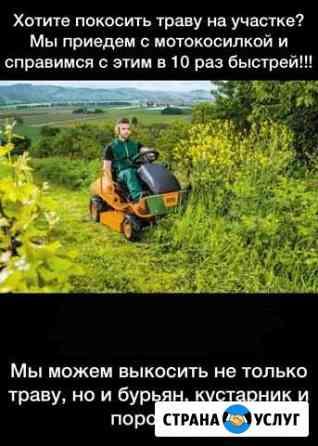 Покос травы Грозный