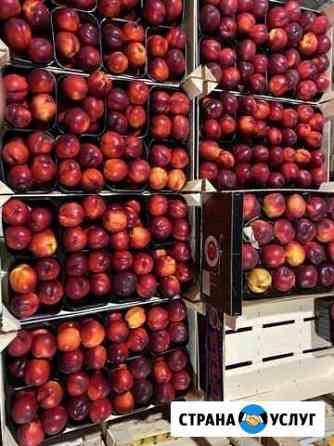Поставка овощей и фруктов Саратов