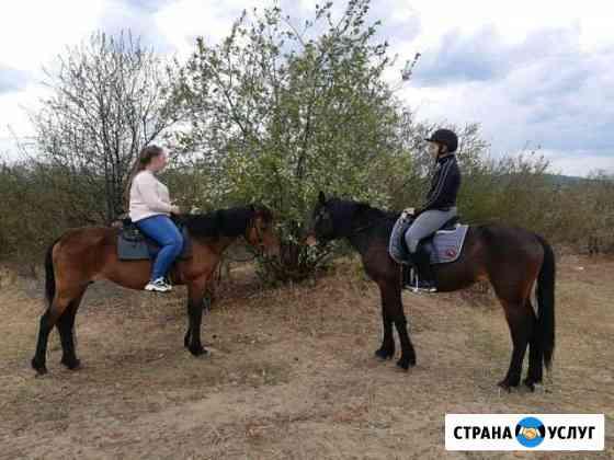 Прогулки на конях Чита