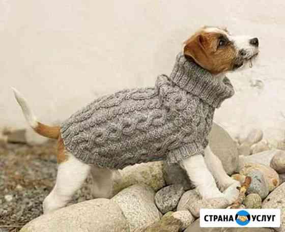 Вязание для животных Саранск
