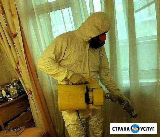 Уничтожение тараканов клопов блох, гарантия Киров