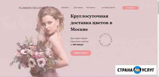 Создаю сайты для бизнеса на Tilda Мурманск