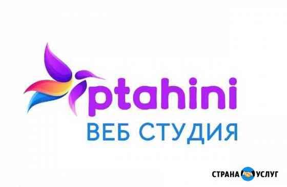 Продвижение и создание сайтов, интернет магазинов Владимир