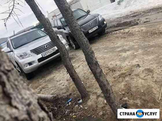 Аренда авто с водителем Новый Уренгой