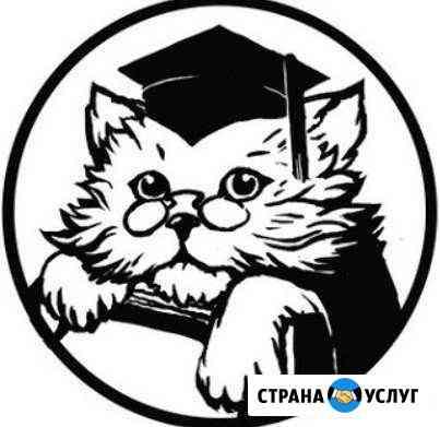 Репетитор по русскому языку Абакан