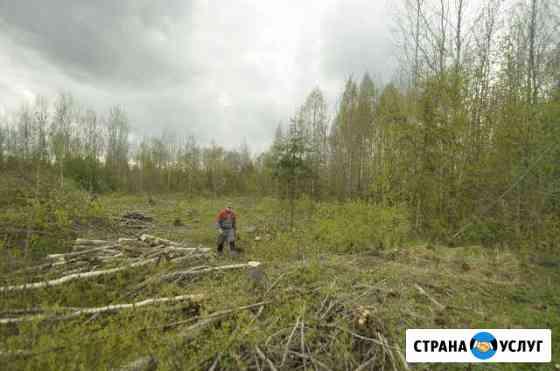 Спил деревьев,корчевание пней,вырубка поросли Тамбов