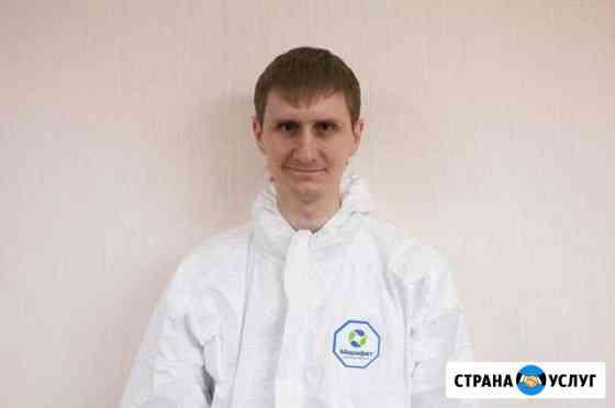 Обработка клопов тараканов мух клещей Архангельск Архангельск