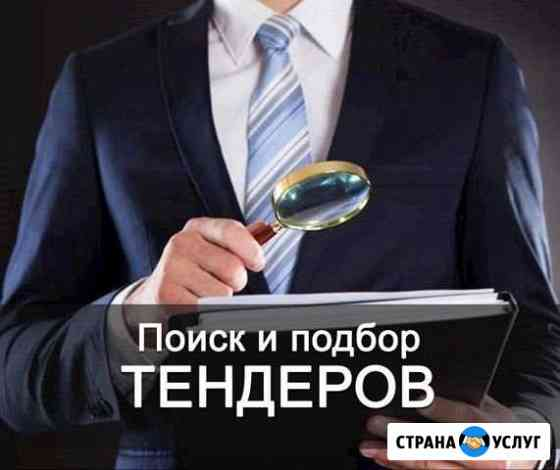 Тендерное сопровождение Владивосток