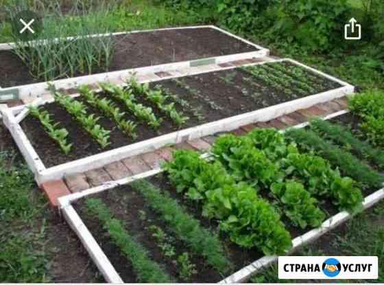 Помощь в огороде Черногорск