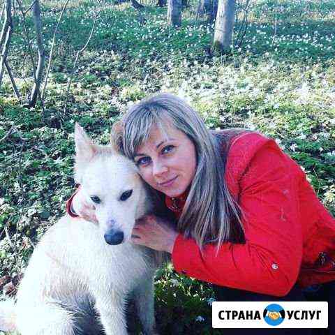 Передержка животных Пермь