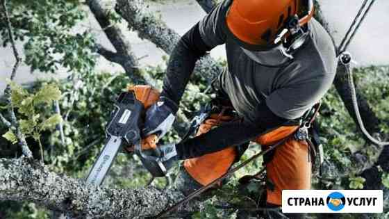 Спил мелких деревьев Волжск