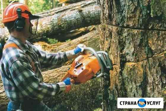 Сруб спилка деревьев уборка кустарников Благовещенск