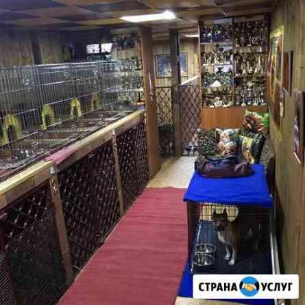 Гостиница для животных. 15 лет на рынке Кемерово