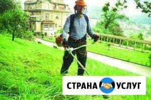 Скос травы Волгореченск