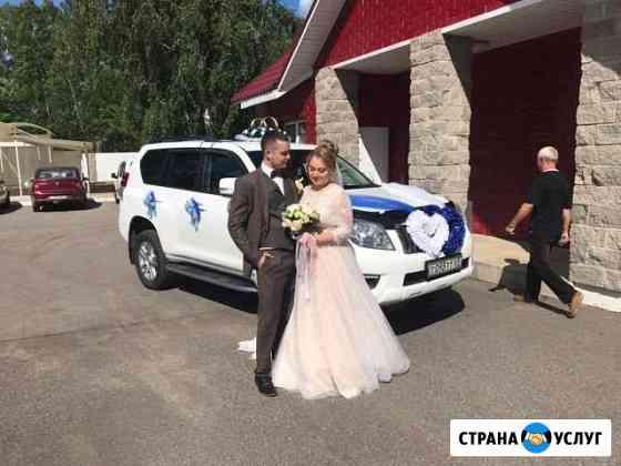 Свадебные украшения в прокат Тверь