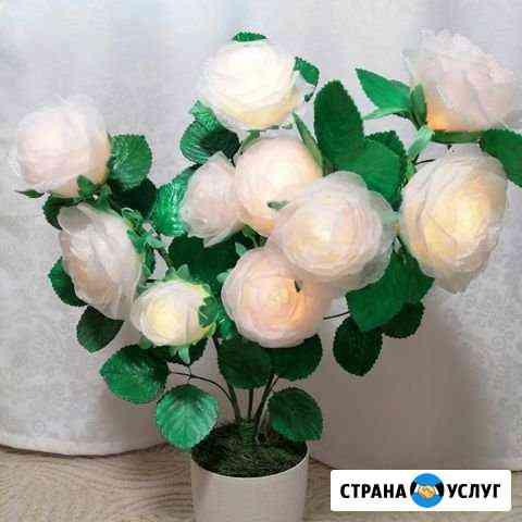 Цветы декоративные, ночник и Самара