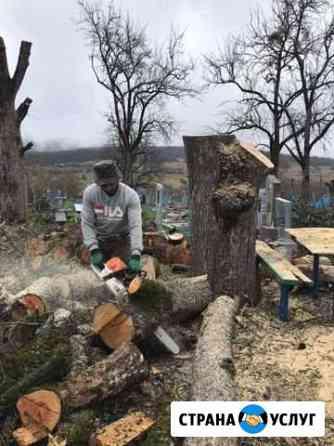 Спил деревьев Майкоп