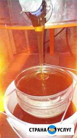 Продам мёд и продукты пчеловодства Энгельс